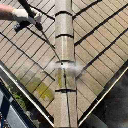 moss removal from roof